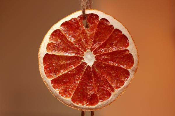 sušička ovocia