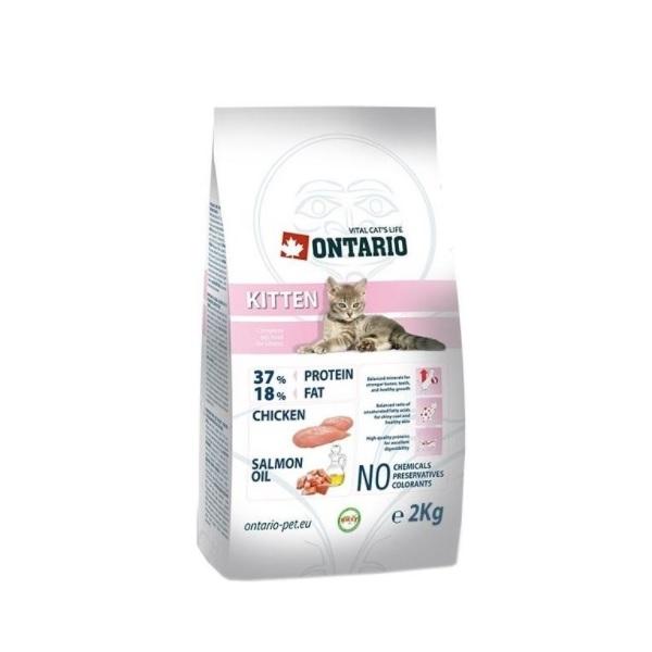 Ontario Kitten recenzie a test